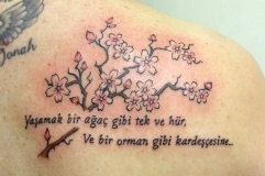 Cherry blossoms and lettering