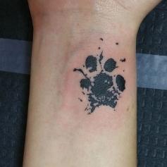 inky paw print